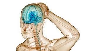 hjernerystelse 2