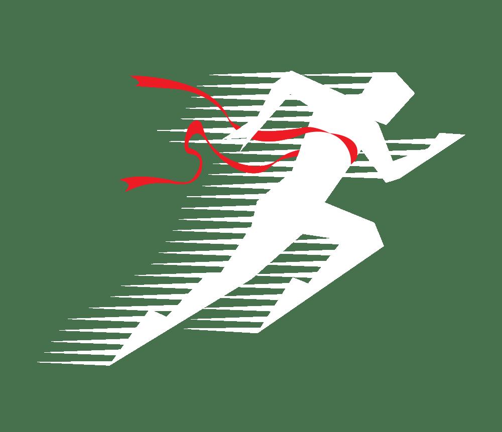Aalborg smerte- og sportsklinik